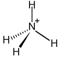 Ion Amonio