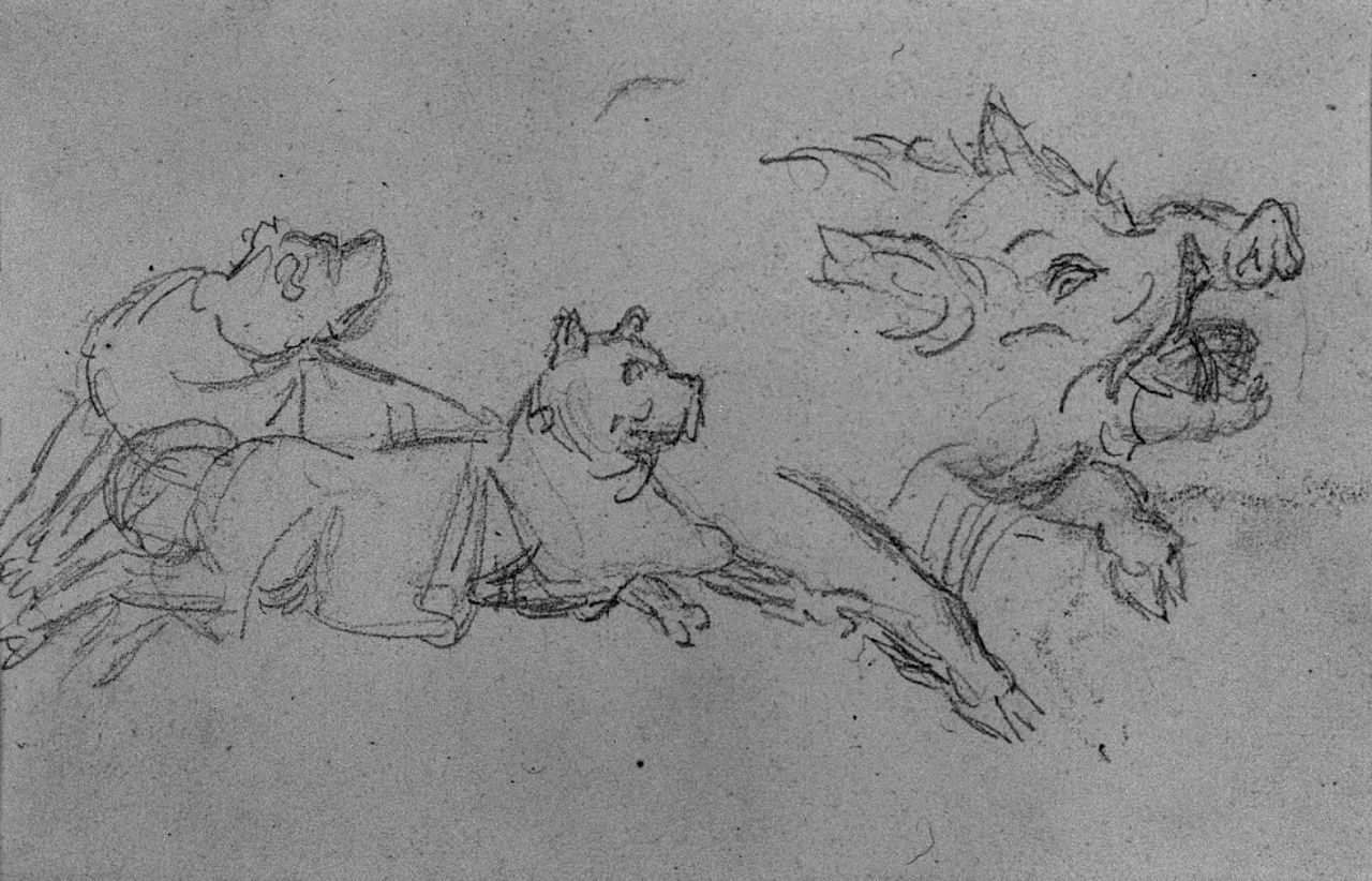 Wild Boar Sketch Of a wild boar - waltersWild Boar Sketch