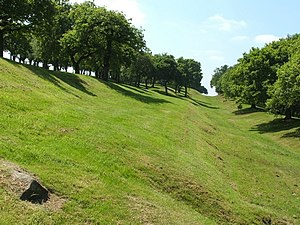 Seabegs Wood - Image: Antonine Wall at Seabegs Wood geograph.org.uk 930380