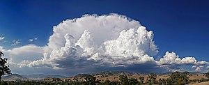 Anvil shaped cumulus panorama edit.jpg