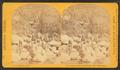 Apache scouts, at Apache Lake, Sierra Blanca range, by O'Sullivan, Timothy H., 1840-1882.png