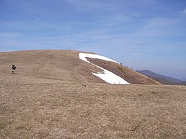Appalachian Trail crosses the grassy bald area atop Max Patch Mountain.jpg