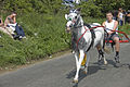 Appleby horse fair, 5th june.jpg
