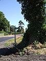 Approaching Tebworth - geograph.org.uk - 204385.jpg