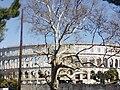 Arena - Titov park.jpg