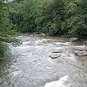 Thumbnail image of Middle Fork River in Audra State Park