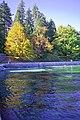 Autumn, Stanley Park Oct, 2015 - 21767513468.jpg