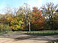 Autumn Colour at the Monument - geograph.org.uk - 643545.jpg