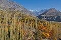 Autumn in Hunza Valley.jpg