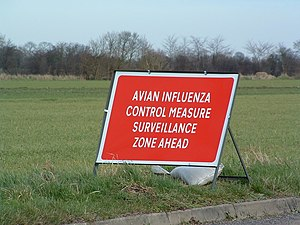 English: Avian Influenza (Bird Flu) Sign Close...