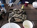 Baked oysters. 焼き牡蠣の食べ放題 - panoramio - z tanuki (1).jpg