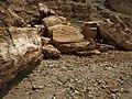 Barakajur river 23.jpg