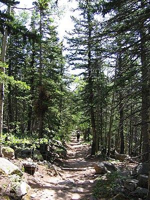 Barr Trail - Image: Barr Trail downward 2007