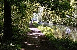 West Byfleet - Basingstoke Canal, West Byfleet