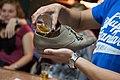 Beer Cantus - shoey.jpg