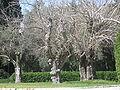 Beit Weizmann IMG 2456.JPG