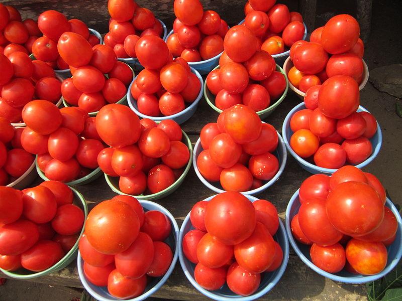 File:Belles tomates.JPG