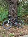Bicicleta de montaña Bajo marca GR.jpg