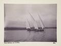 Bild från familjen von Hallwyls resa genom Egypten och Sudan, 5 november 1900 – 29 mars 1901 - Hallwylska museet - 91653.tif