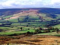 Bilsdale Views - geograph.org.uk - 169424.jpg