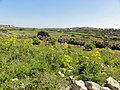Bingemma Rd, Mgarr, Malta - panoramio (2).jpg