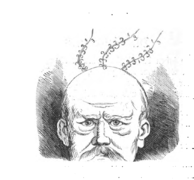 Bismarcj 1871 S. 118.png