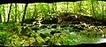 Blanchard Springs Caverns by D.L.H. - panoramio - Dameon Hudson (6).jpg