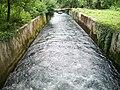 Bocche del timavo, il fiume - panoramio.jpg