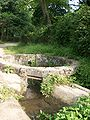 Botanical garden (Zugdidi15).jpg
