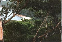 Bouddi-Nationalpark