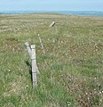 Boundary fence and stone, Scammonden - Marsden - geograph.org.uk - 839784.jpg