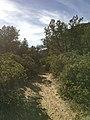 Boynton Canyon Trail, Sedona, Arizona - panoramio (43).jpg