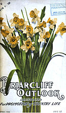 Magazine cover, with a bunch of daffodils
