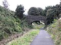 Bridge over the Great Northern Trail - geograph.org.uk - 1496749.jpg