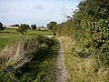 Bridleway between Trowell Moor and Cossall - geograph.org.uk - 1149826.jpg