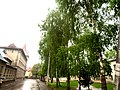 Brody, Lviv Oblast, Ukraine - panoramio (251).jpg