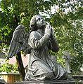 Brosen bielsk podlaski aniol.jpg
