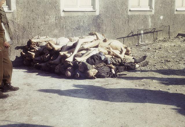 filebuchenwald corpses 60626jpg wikimedia commons