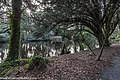 Bushy Park, Dublin (8389516821).jpg