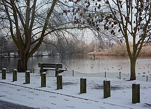 English: By Needham Lake in the snow A cold wi...
