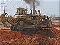 CAT-D10N-P1060092.jpg