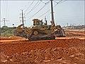 CAT-D10N-P1060096.jpg