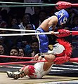 CMLL November 30 Microman and Perico.jpg