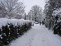 Cagefoot Lane, Henfield - geograph.org.uk - 1160768.jpg