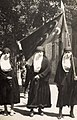 Cairo-manifestation mars 1919 (cropped).jpg
