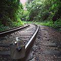 Caminho Da Trilha do Itupava - Caminhada pelo trilho do trem.jpg