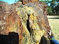 Campo del Cielo meteorite, El Chaco fragment, detail2.jpg
