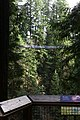 Capilano Suspension Bridge 2012 Winter (6992136925).jpg
