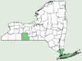 Carex abscondita NY-dist-map.png