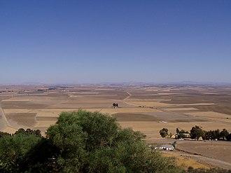 History of Carmona, Spain - Vega of Carmona